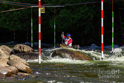 Photograph - Between Rock And Slalom Poles by Les Palenik