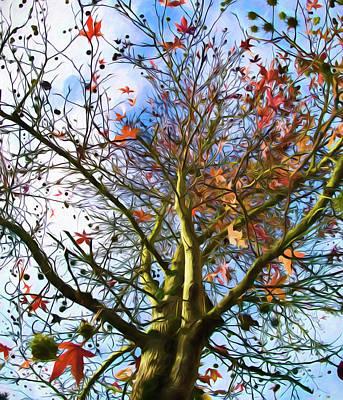 Painting - Between Seasons by Bonnie Bruno