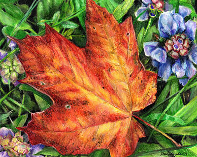 Painting - Between Summer And Fall by Shana Rowe Jackson