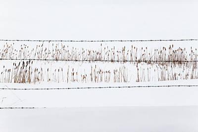 Between The Lines - Art Print