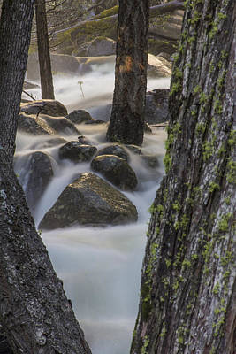 Photograph - Between The Trees Yosemite  by John McGraw