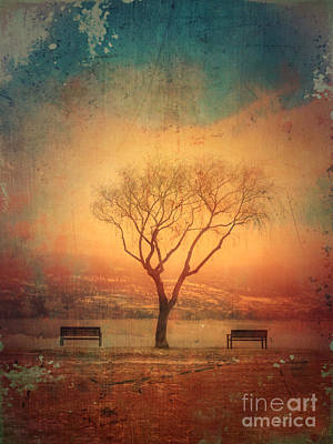 Summerland Photograph - Between Two Benches by Tara Turner