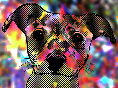 Beware Of Dog - Chihuahua Pop Art Dog Portrait Print by Rayanda Arts