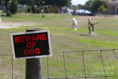 Beware Of Dogs Art Print