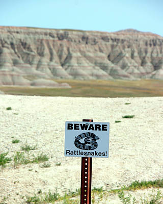Photograph - Beware Rattlesnakes by George Jones