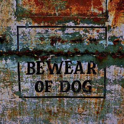 Photograph - Bewear Of Dog by Misentropy