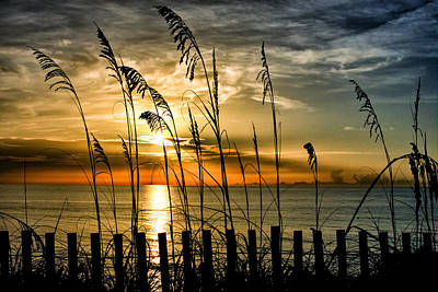 Photograph - Beyond The Dunes by Mike Sperduto