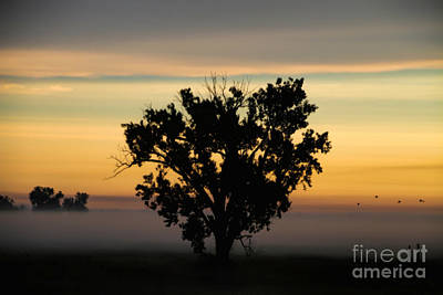 Photograph - Beyond The Fog Lies Clarity by Elizabeth Winter