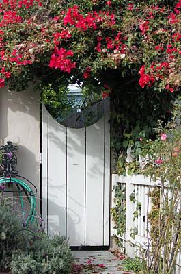 Beyond The Garden Gate Art Print by Suzanne Gaff