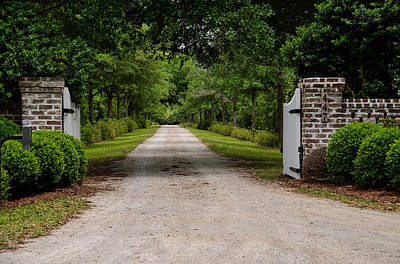 Photograph - Beyond The Gate by Linda Brown