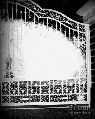Photograph - Beyond The Gate by Vicki Lynn Sodora