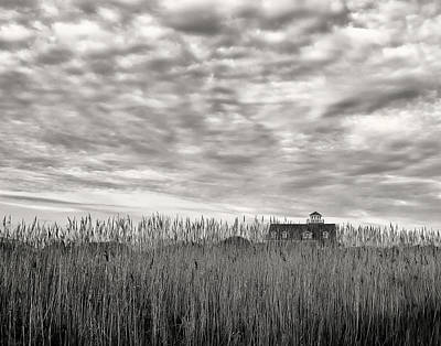 Photograph - Beyond The Grass by Art Cole