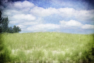 Photograph - Beyond The Grassy Dune by Kathi Mirto