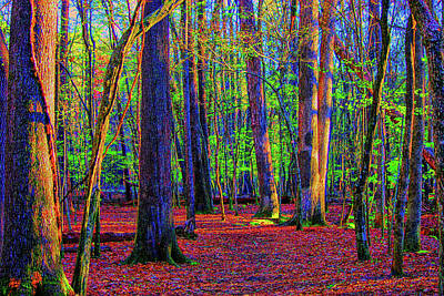 Photograph - Beyond The Green by Dennis Baswell