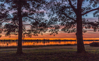Photograph - Beyond The Trees At Brittlebank Park by Donnie Whitaker