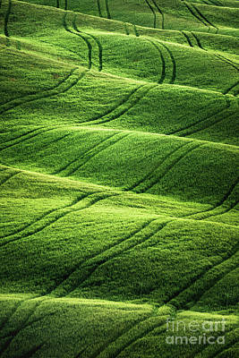 Abstract Shapes Photograph - Beyong Green Waves by Evelina Kremsdorf