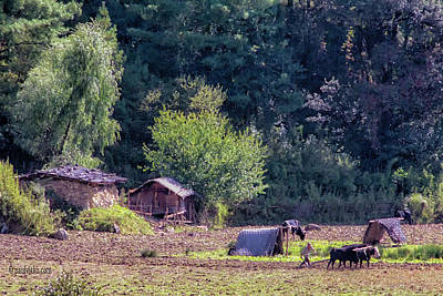 Photograph - Bhutan Field Work by Paul Vitko