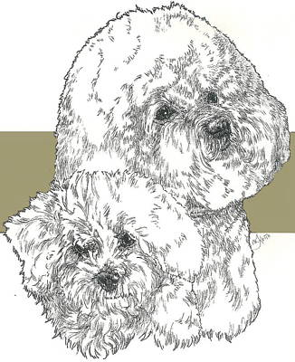 Mixed Media - Bichon Frise And Pup by Barbara Keith