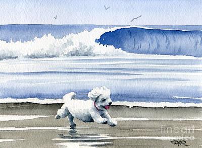 Bichon Frise At The Beach Art Print by David Rogers