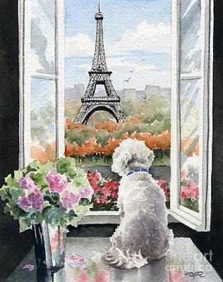 Paris Painting - Bichon Frise In Paris by David Rogers