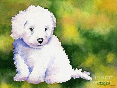 Bichon Frise Puppy Art Print by David Rogers