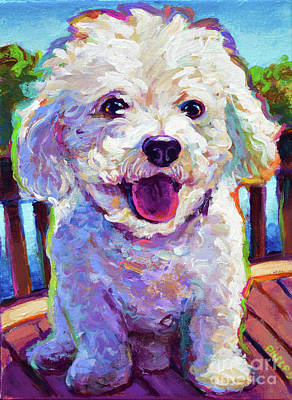 Painting - Bichon Frise by Robert Phelps