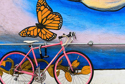 Photograph - Bicycle by Ben Graham