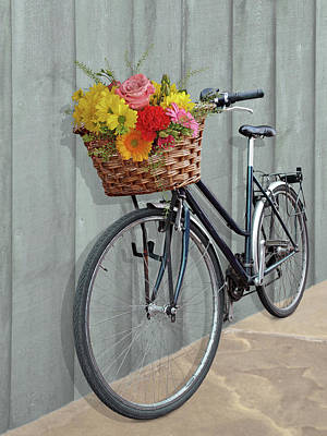 Photograph - Bicycle Flower Basket by Gill Billington
