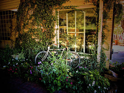 Bicycle In Bloom Art Print by Rosemary McGahey