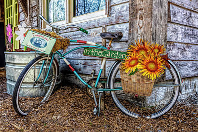Photograph - Bicycle In The Garden Art In Detailed Color And Sunflowers by Debra and Dave Vanderlaan
