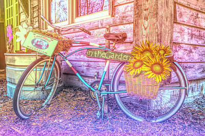 Photograph - Bicycle In The Garden Art Watercolors With Sunflowers by Debra and Dave Vanderlaan