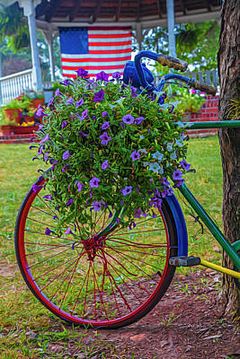 Photograph - Bicycle In The Park Art Painterly by Debra and Dave Vanderlaan