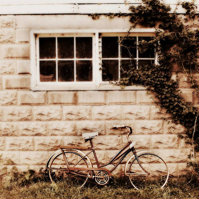 Country Chic Photograph - Bicycle by Julie Hamilton
