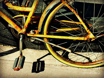 Photograph - Bicycle Nostalgia by Miriam Danar