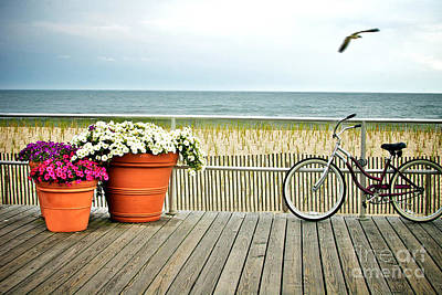 Seagull Photograph - Bicycle On The Ocean City New Jersey Boardwalk. by Melissa Ross