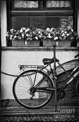 Bicycle With Flowers Art Print by Silvia Ganora