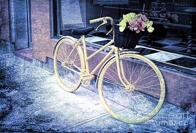 Photograph - Bicycle With Flowers - V2 by Les Palenik