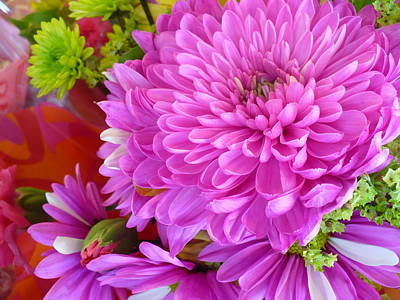 Photograph - Big  And Pink by Florene Welebny