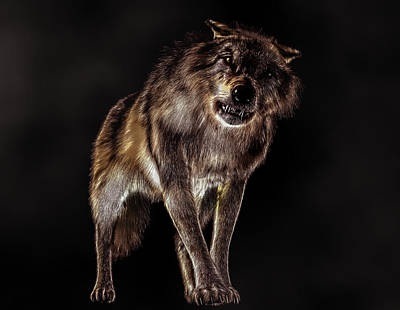 Digital Art - Big Bad Wolf by Daniel Eskridge