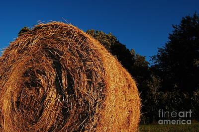 Big Bales Art Print by The Stone Age