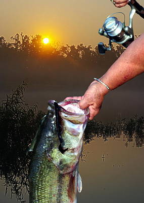 Big Bass At Sunrise Art Print by Ron Kruger