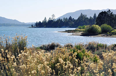 Big Bear Lake Shoreline Art Print
