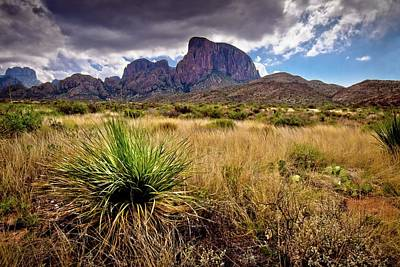 Photograph - Big Bend Morning by Linda Unger