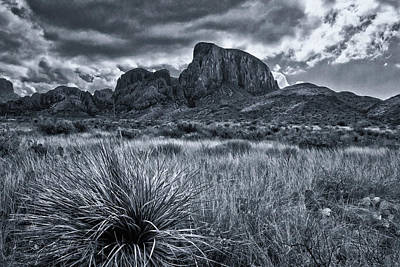 Photograph - Big Bend National Park by Linda Unger