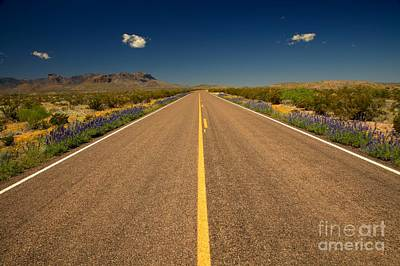 Photograph - Big Bend Park Road by Adam Jewell