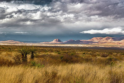 Photograph - Big Bend Storm Vista by Allen Biedrzycki
