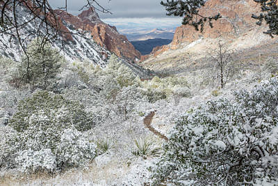 Photograph - Big Bend Window With Snow by Kathy Adams Clark
