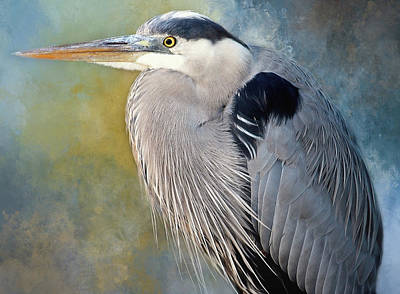 Photograph - Big Blue Portrait by HH Photography of Florida