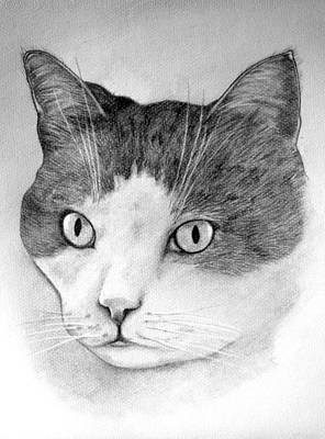 Art Print featuring the drawing Big Boy Baily by John Stuart Webbstock