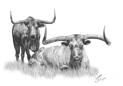 Longhorn Drawing - Big Buddies by Sabrina  Thiel